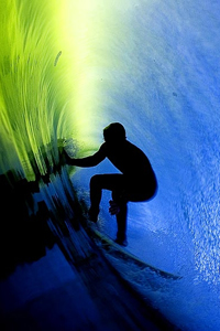 surfing a big wave for marketing with teeth